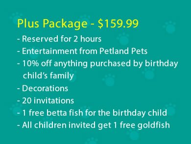 plus-party-package