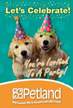 your invited to a party